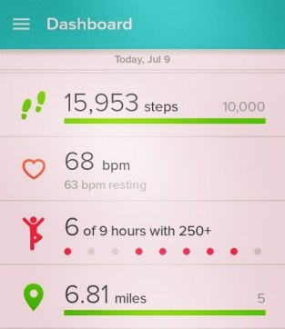 FitBit Stats: July 9th Park Run