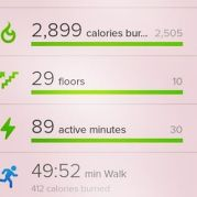 FitBit Stats: July 9th Park Run